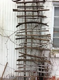 Garden driftwood trellis - could even make with just regular branches. I want to make this for the back of my shed for my vine flowers :) (Diy Garden Trellis) Garden Crafts, Garden Projects, Jardin Decor, Garden Trellis, Diy Trellis, Garden Planters, Pallet Planters, Potager Garden, Garden Sofa