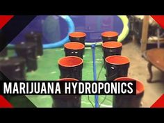 Do It Yourself DIY Under Current Hydroponics Water Culture System - YouTube