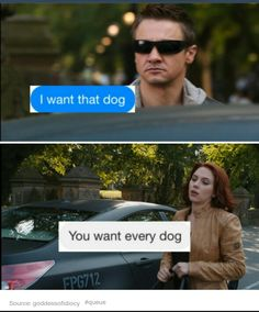 This must be the day after UndercoverCopClint pulled a guy over just to pet his dog...