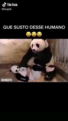 Funny Vidos, Really Funny Memes, Funny Laugh, Stupid Funny Memes, Hilarious, Funny Prank Videos, Crazy Funny Videos, Super Funny Videos, Funny Animal Jokes