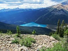 Emerald Lake from the Wapta Highline Trail in Yoho National Park, BC, Canada.