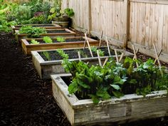 How to Build and Install Raised Garden Beds by Popular Mechanics: Well suited to novices, raised gardens allow you to customize the soil bed and maximize the use of space by setting plants closer together and increasing yield while decreasing water usage Building Raised Garden Beds, Raised Beds, Diy Garden Projects, Garden Ideas, Fence Ideas, Pallet Ideas, Pallet Projects, Garden Boxes, Garden Planning