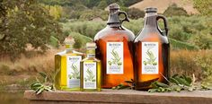 Olive Oil Fraud Rampant, Trade Agency Finds - ABC News