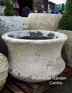 Large Atlantis Bowl Bamboo Pot   Woodside Garden Centre   Pots to Inspire Woodside Garden Centre, Under The Ocean, Atlantis, Garden Pots, Planter Pots, Bamboo, Inspire, Antique, Vases