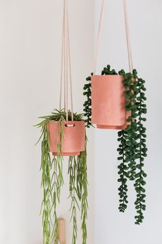 DIY Terracotta Clay Hanging Planters - what a cool idea! I just made a hanging air dry planter for my house! I wonder if you could add some dye and make it grey terracotta? Diy Hanging Planter, Diy Planters, Hanging Planters, Succulent Planters, Concrete Planters, Garden Planters, Succulents Garden, Room Deco, Decoration Plante
