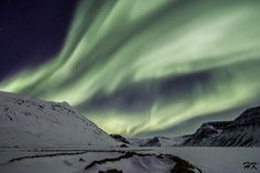 Northern lights in the Westfjords, Iceland. Amazing right?