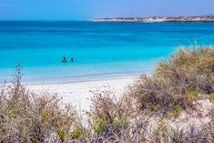 Cape Range National Park er dyre- og naturelskerens paradis! Her kan man finde noget af det bedste snorkelling i Australien, fede treks og masser af dyreliv!