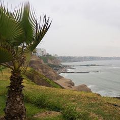 Walking in Malecón and looking at the view  on my way to a shopping center that is located under the park  #malecón #park #view #ocean #lima #travel #peru #vacation