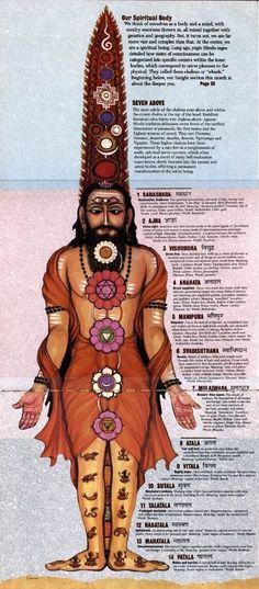 Chakra Meditation, Chakra Healing, Guided Meditation, Meditation Symbols, Ayurveda, Chakras, Rose Quartz Meaning, Chakra System, Spirit Science