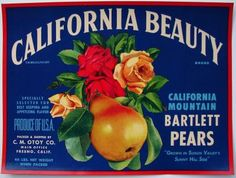 I at least have to have one Bartlett Pear sign in my house.