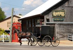 An Amish buggy bustles past Lehman's, a general store known for its vast selection of non-electric appliances in Kidron, Ohio.