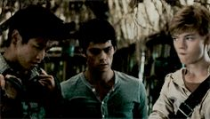the maze runner The Scorch Trials Maze Runner Thomas, Newt Maze Runner, Maze Runner Funny, Maze Runner Movie, Maze Runner Trilogy, Maze Runner Series, James Dashner, Scott Mccall, Derek Hale