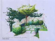 Esquisse d'une petite cour réalisée dans le cadre de l'avant projet d'aménagement paysager d'un petit jardin à Baugé-en-Anjou