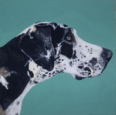 I love this modern take on a realistic pet portrait. Beautiful colour contrast!