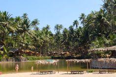 Cola beach Goa India - fresh water pond