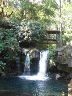 Uruapan, Michoacan....Parque Nacional... Loved getting the tour by my Hubby of where he grew up :)