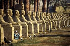 Ancient Egypt, Ancient History, Black History, Art History, Conservation Architecture, Archaeological Discoveries, African American History, Ancient Civilizations, Ethiopia