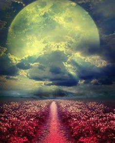 La Luna by stella