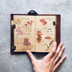Как оформить свой личный дневник| ЛД | ВКонтакте Camping Books, Fallen London, Posca, Art Sketchbook, Journal Pages, Markers, Photo And Video, Inspiration, Marker