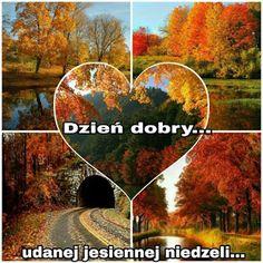Dla każdego: DZIEŃ DOBRY Cute Gif, Humor, Facebook, Fotografia, Polish, Good Morning, Night, Pictures, Cheer