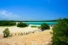 Mejor conocida como Playa Sucia, la playa que se encuentra al lado del Faro de Cabo Rojo es uno de los lugares mágicos que puedes encontrar en nuestra Isla. Aunque está bastante remoto, es ...