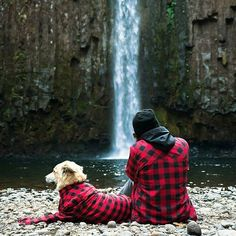 Best moments in life. Abiqua Creek, Oregon. Photo by @ryan field. Check out the @animalmedley feed for daily animal photos 🐶
