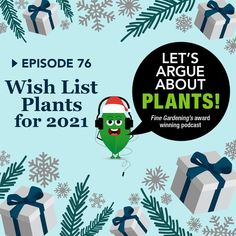 It's that time of year when we dream of all the plants we'd buy if a blank check showed up in our stockings. 