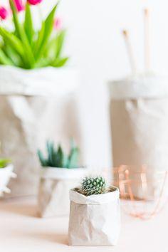 DIY Packing Paper Sack Planters & Vases - party centerpiece idea Parcel Paper, Paper Sack, Succulent Planter Diy, Succulents Diy, Planter Ideas, Diy Planters, Decoracion Low Cost, Mini Vasos, Cactus
