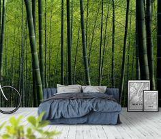 Grønne bambus trær Skog fototapet/tapet fra Happywall