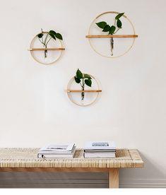 House Plants Decor, Plant Decor, Hanging Wall Planters, Diy Wall Planter, Bamboo Planter, Succulent Planters, Succulents Garden, Floating Plants, Wrought Iron Decor
