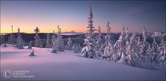 Winter Tranquility by Zack Schnepf, via Flickr - I love snow sunsets!!!!