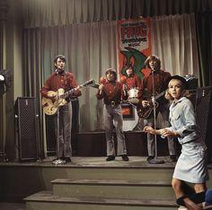 News Photo : Davy Jones, Mickey Dolenz, Peter Tork and Mike. Mickey Dolenz, Peter Tork, 60s Music, Davy Jones, The Monkees, Daydream, Tv Shows, Hero, Cool Stuff