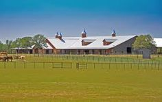 horse stables #horsestable #equine