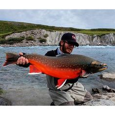An absolutely stunning male Arctic Char from @somdreamscometrue up in Nunavut Canada. _________________________________ #char #riverfishing #artphotography #canada #beautiful #current #guidelife#linebreakers #treeriver #arctic #salmon #trout #fishing #anglingbuzz