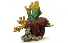 Rocks & Coral - Galene Artificial Living Coral is an ideal Aquarium Decoration. This Replica Reef Coral is ideal for any aquarium.Galene Artificial Living Coral - Our Galene Artificial Living Coral is an ideal Aquarium Decoration.