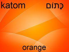 Hebrew orange - katom.