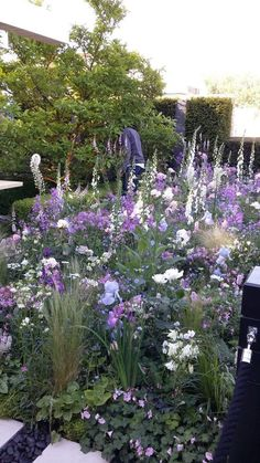 Beautiful purple in a cottage garden # planting # fox gloves # color garden # purple - garden design Beautiful purple in a cottage garden # Fox gloves garden ,