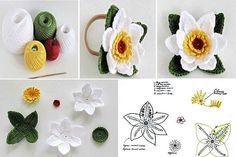 Odnoklassniki fiori