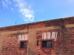 Eyes in Adelaide, SA