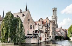 oyya - Bruges   by Skinn Branding Agency