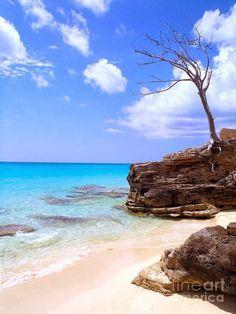 Beach in Bimini, Bahamas
