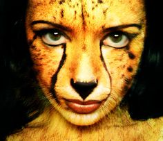 Cheetah animan, half human half cheetah.