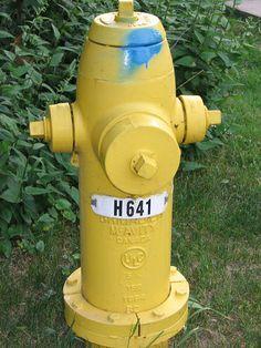 Fire Hydrant ~ Kingston, Ontario, Canada