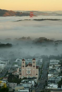 oh wait - that's the block i grew up on! Ocean Fog, San Francisco, California