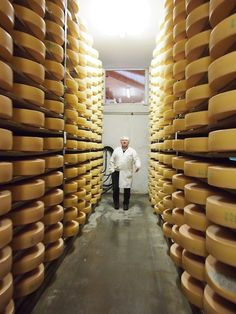 "Köstliches vom Kaiserwinkl: ""Käse & Klassik"" in Tirol Tirol Austria, Travel, Voyage, Viajes, Traveling, Trips, Tourism"