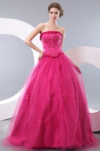 Wholesale Strapless Hot Pink Long Celebrity Dress For Less with Appliques