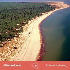 Playa de Doñana (Almonte, Huelva), by @huelvaturismo