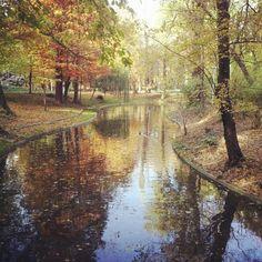 autumn.scenery