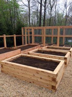 Building Raised Garden Beds, Raised Beds, Cedar Raised Garden Beds, Kew Gardens, Small Gardens, Raised Gardens, Landscape Solutions, Dubai Miracle Garden, Magic Garden