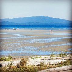 Top resorts in Western Canada. Beach Club Resort, Beach Wedding Inspiration, Western Canada, Vancouver Island, Mountain View, Hotels And Resorts, East Coast, Seaside, Ocean